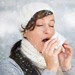 refredat-hivern